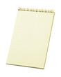 Stenographer's Lined Notepad