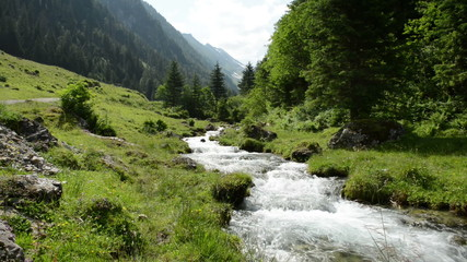 Zillertal Alps stream water though forest and mountains