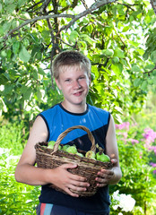 The boy,the teenager with a basket of apples in a garden
