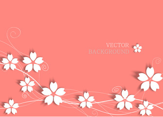 white cherry blossom on pink background