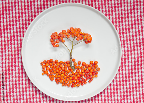 Ashberries in the plate isolated on white