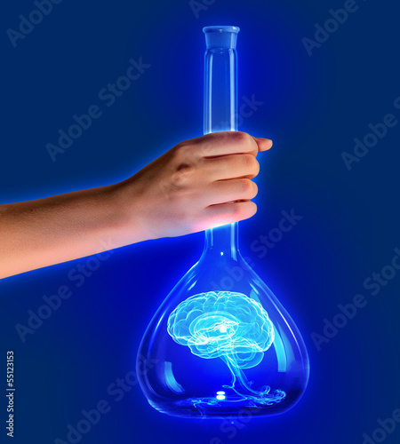 Human brain in test tube