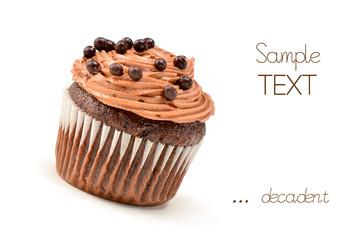 Decadent chocolate iced cupcake