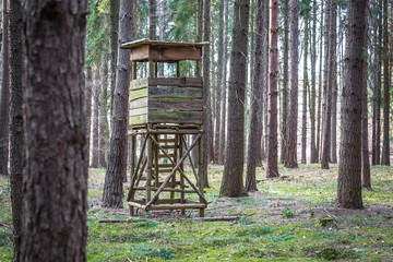 Jägerstuhl im Wald