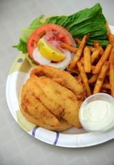 fried fish lunch with fries