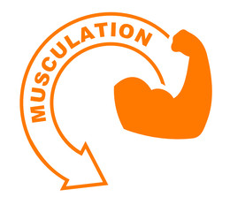 musculation flèche orange