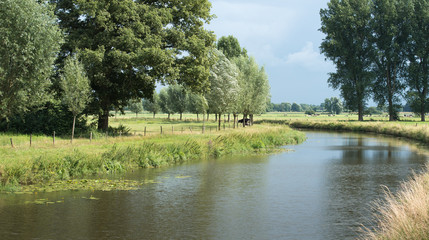 Curved river in a Dutch landscape in summertime