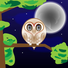 Cute Barn Owl Staring At Night with Full Moon