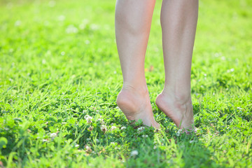 Female legs standing on tiptoe on green grass. Close up