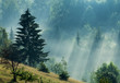 Foggy dawn in mountains