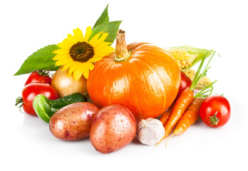 autumnal harvest fresh vegetable isolated on white background