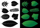 Leaf Silhouette Vector Illustrations