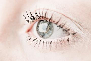 Grey human eye.