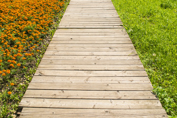 Wooden road through grass and flowers
