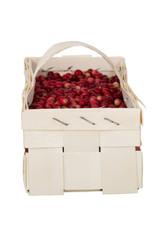 Box of Fresh Bright Red Cranberries