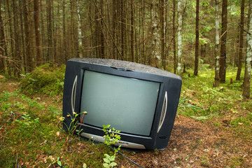 old TV in the forest