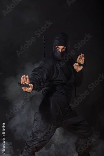 Ninja in smoke in defence position