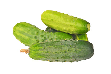 Fresh green cucumber gherkin, isolated on a white background
