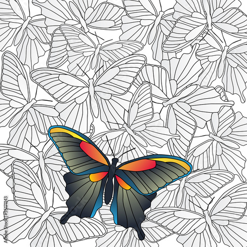 Vector background with a butterfly