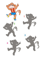 gioco, l'ombra della scimmia