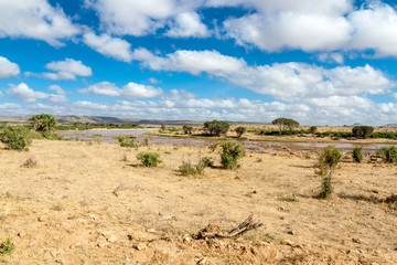 Savana landscape in Africa. Tsavo West, Kenya.