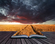 Creative concept pages of book Stunning wheatfield landscape Sum