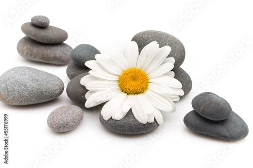 Spa stones. - 55176999