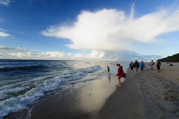 Wybrzeże Bałtyku w okolicy Jastrzębiej Góry, lato, Polska