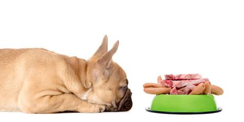 Hund mit Fressnapf voll Fleisch und Wurst