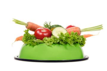 Fressnapf voll Gemüse