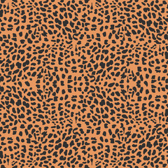vector leopard  background