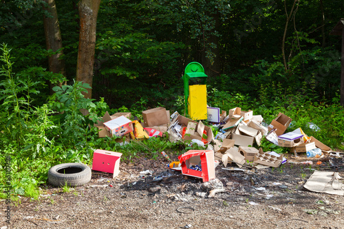 Garbage in landfill near forest - environment pollution.