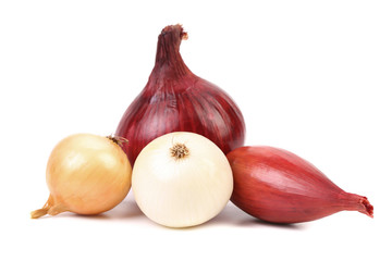 Fresh different kind onions