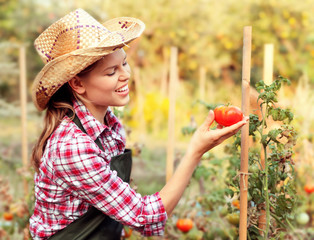 Happy smiling gardener enjoying raised tomato in the garden