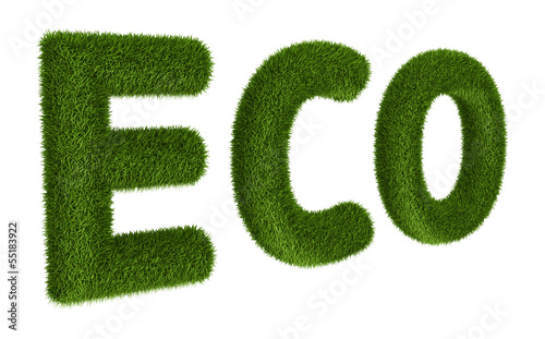Title ECO with grass