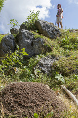 Woman looking big anthill in the mountains, selective focus