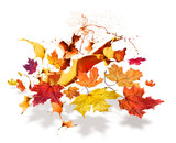 Autumn leaves color burs poster