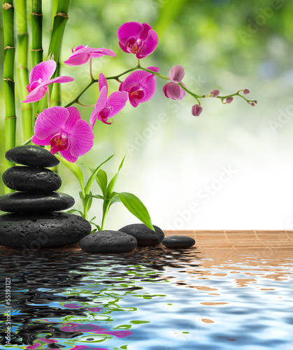 Wall mural composition bamboo-purple orchid-black stones