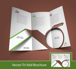 Vector Business Back Side Brochure Design Template