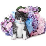 Little kitten with a bow and flowers