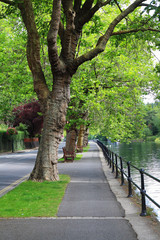 River Thames in Maidenhead, England