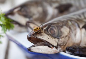 I love Mackerel Fish
