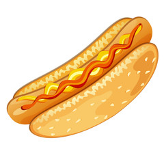 Illustration of hot-dog on white background