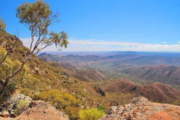 Australian outback and Flinders Ranges