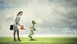 Business woman watering monet tree