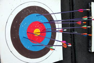 Target archery and Many arrow.