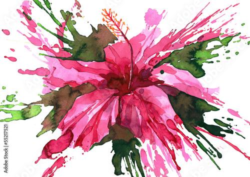 Fototapeta hibiscus flower