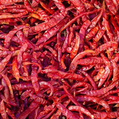 dry chili background