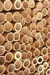 Bamboo wall in Gili Islands