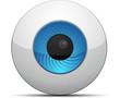 Web Cam button